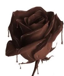fleur,en,chocolat