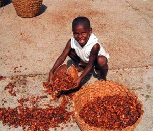 Choco-afrique